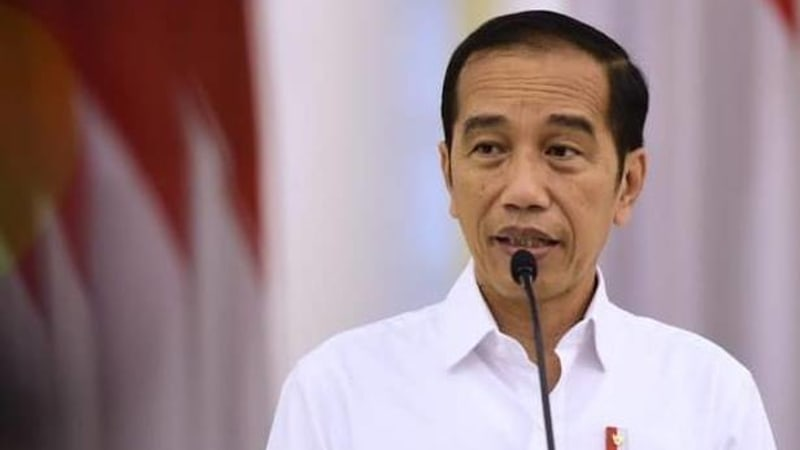 Jokowi called for immediate debt relief for developing countries